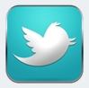 large twitter icon